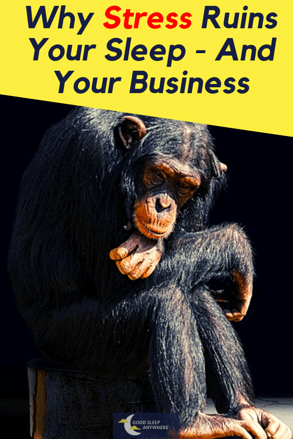 Entrepreneurial Insomnia - Why Stress Ruins Your Sleep and Your Business