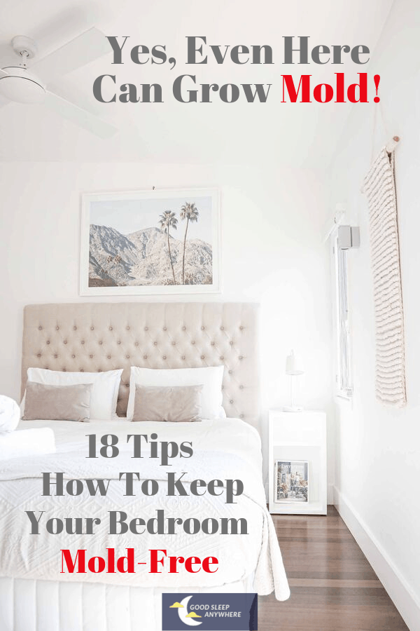 18 Tips How to keep your bedroom mold-free