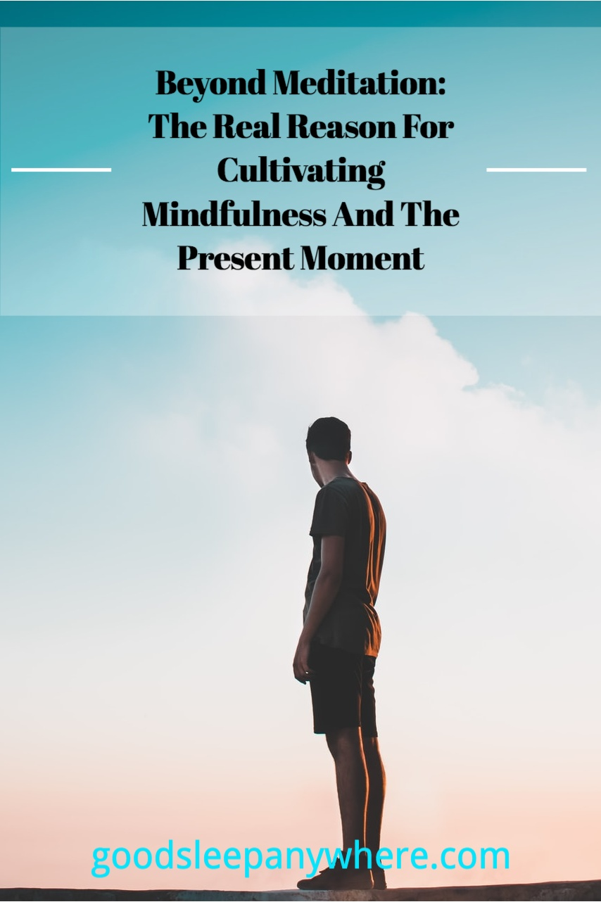 Beyond Meditation The Real Reason For Cultivating Mindfulness And The Present Moment.